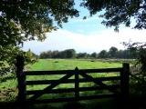 "2020-10-16 oppad walk ""idyllic view""  07"